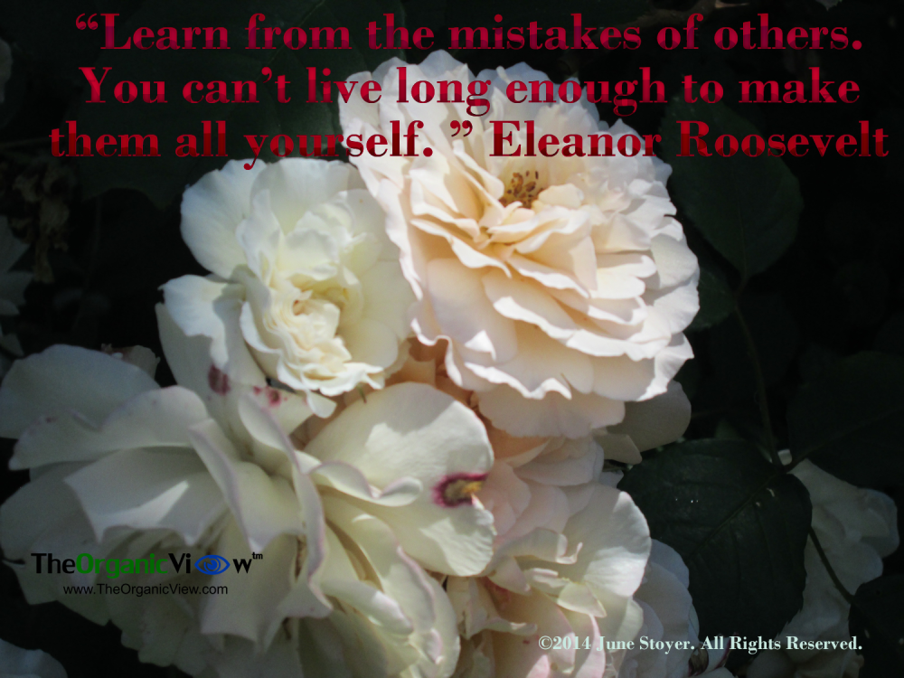 bits eleanor roosevelt mistakes