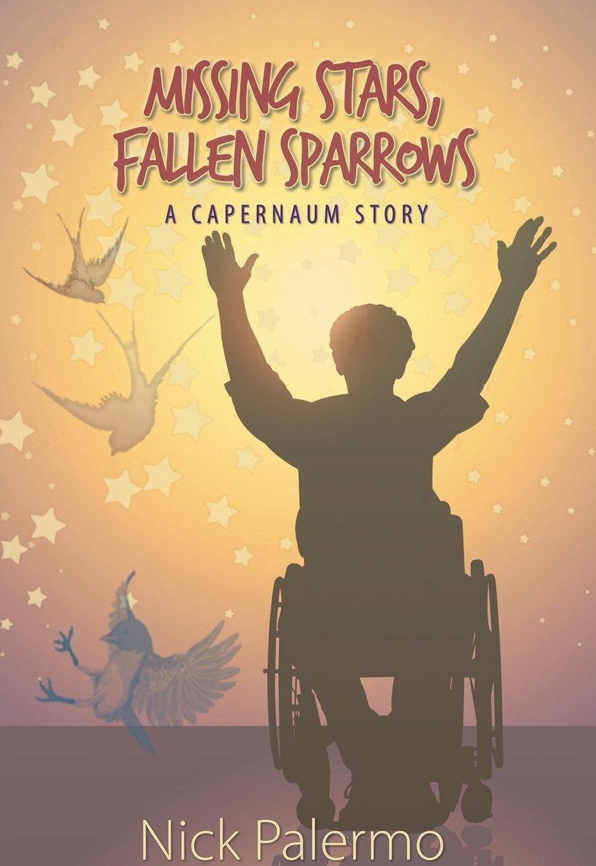 missing stars fallen sparrows