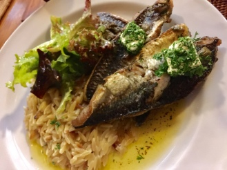 Grilled Fish with Orzo